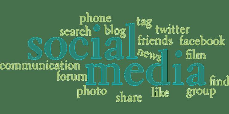 gestion des réseaux sociaux basilic production